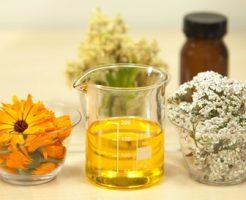 脂肪酸の種類について
