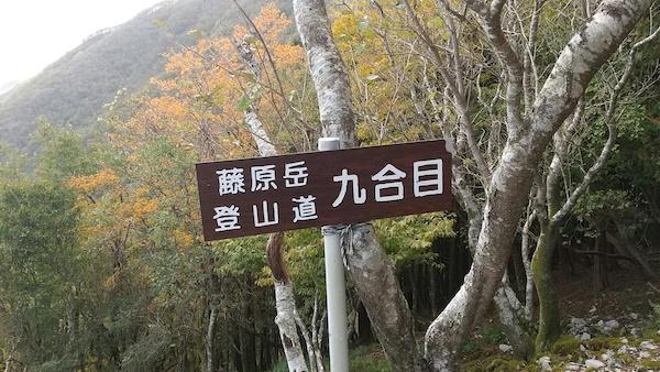 藤原岳の九合目の景色